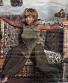 Тина Тернер (Tina Turner)  Психотип: Драйзер, ЭСИ Подтип: ИЛ