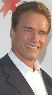 Тип: Максим, ЛСИ Подтип: СЛ           Мужчина  Арнольд Шварценеггер (Arnold Schwarzenegger)