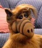 Альф (Alf, Gordon Shumway)  Психотип: Наполеон, СЭЭ Подтип: СЛ