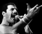 Фредди Меркури (Freddie Mercury, Farryx Balsara)  Тип: Джек Лондон, ЛИЭ Подтип: СЛ